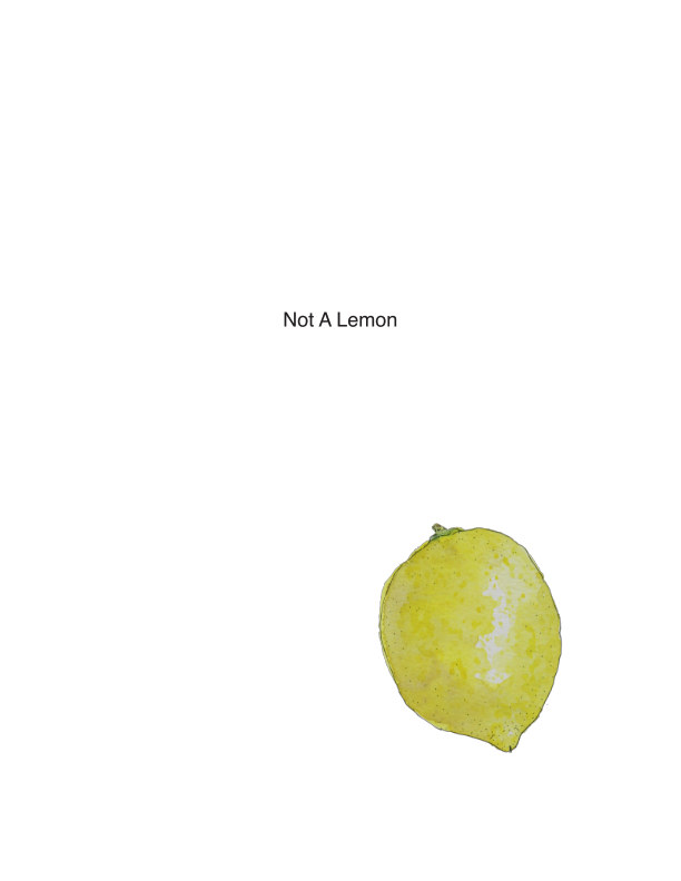 View Not A Lemon by Alicia Dornadic