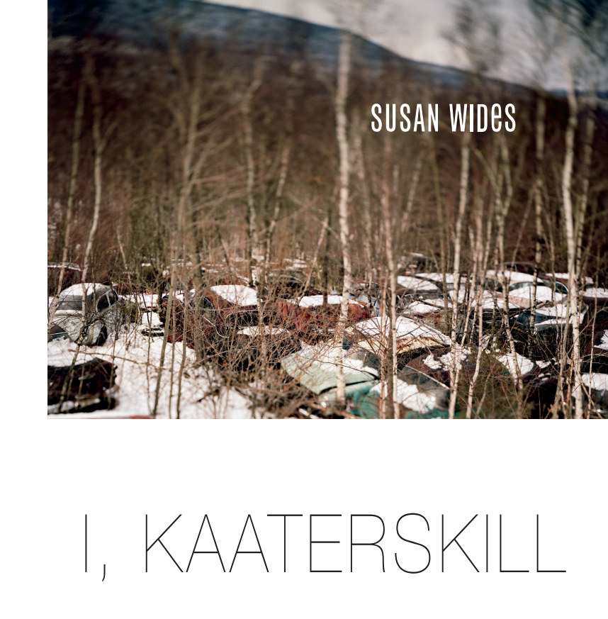 View I, Kaaterskill by Susan Wides