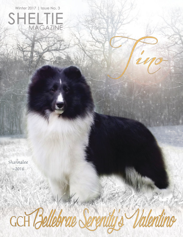 View Sheltie Magazine, Winter 2017, Issue No. 3 by ModPosh Publishing, LLC