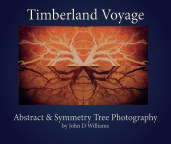 Timberland Voyage book cover