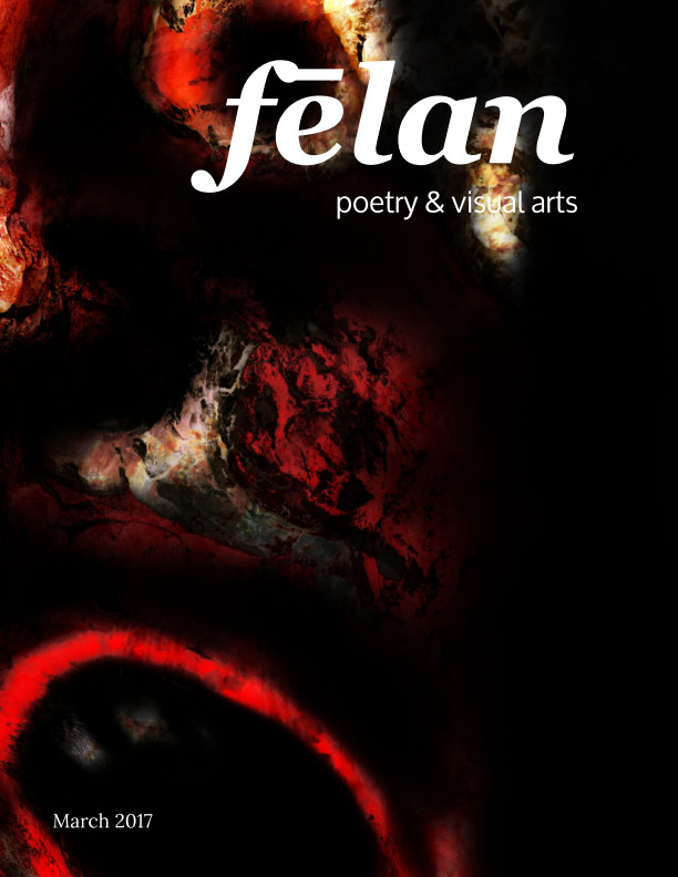 View felan - issue 10 Anger by Jennifer Nichole Wells