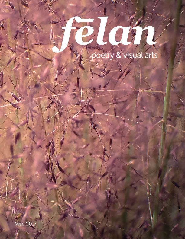 View felan - issue 11 Attraction by Jennifer Nichole Wells
