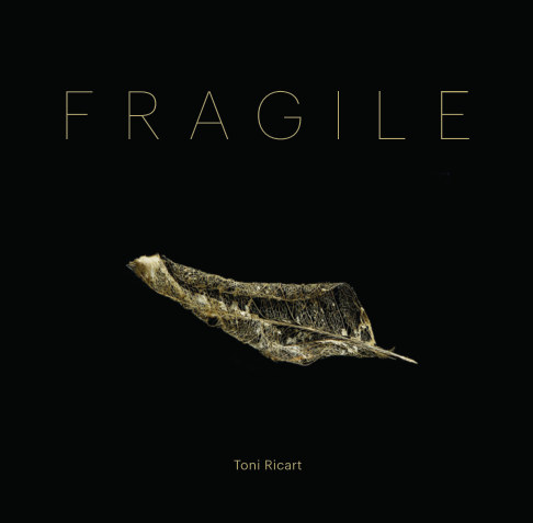 View FRAGILE by Toni Ricart