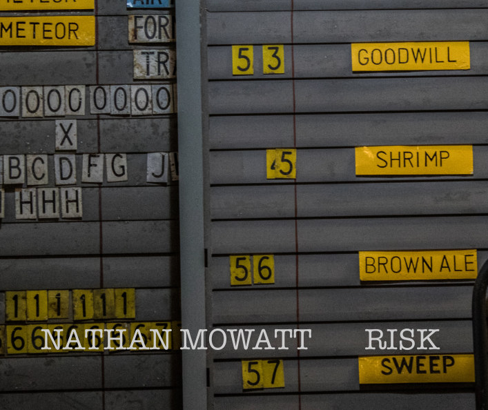 View Risk by Nathan L. Mowatt