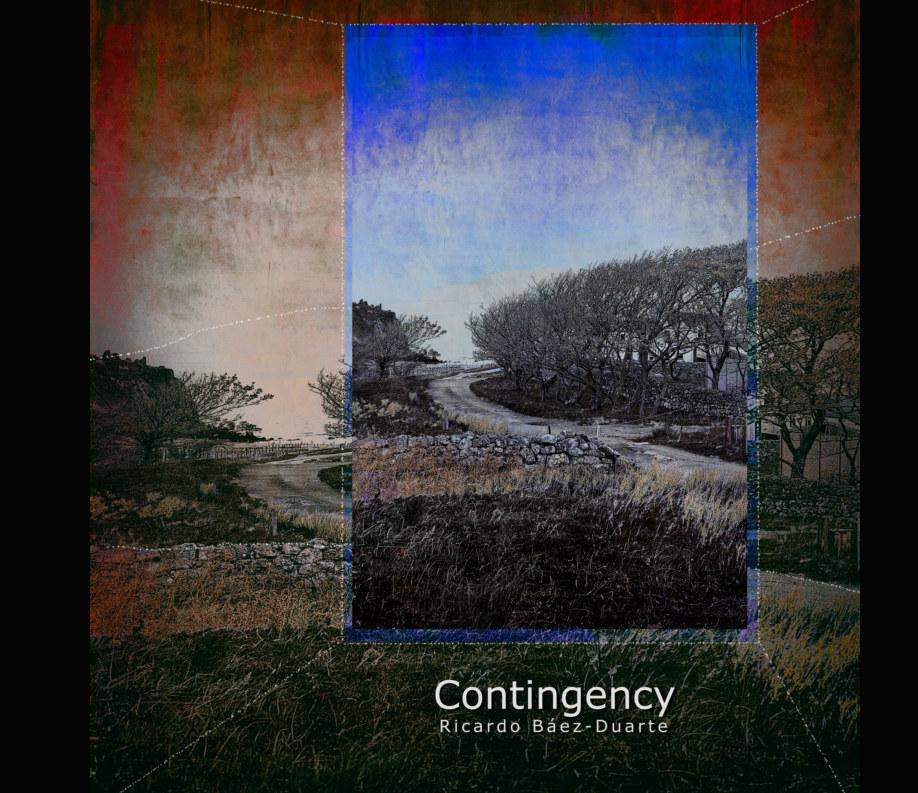 View Contingency by Ricardo Báez - Duarte