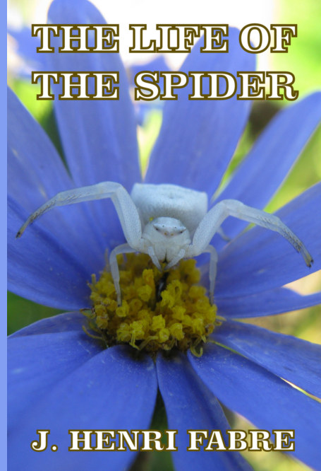 View The Life of the Spider by J. Henri Fabre