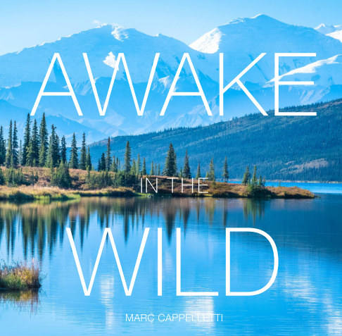 View Awake in the Wild by Marc Cappelletti