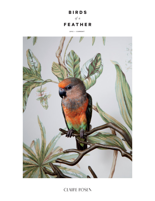 View 2018 Catalogue | Birds of a Feather by Claire Rosen