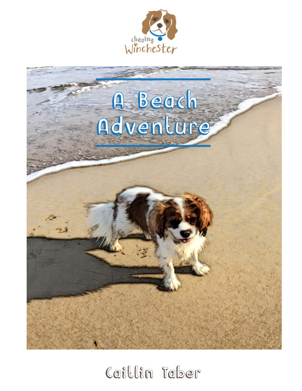 View A Beach Adventure by Caitlin Taber