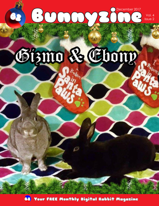 View Bunnyzine Volume 4 Issue 2 - Gizmo and Ebony by Dustin Campbell