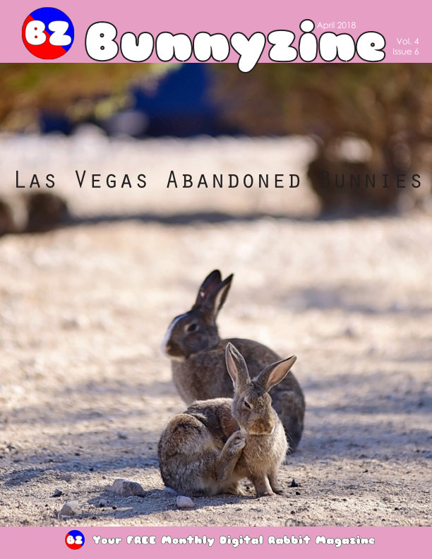 View Bunnyzine Volume 4 Issue 6 - Las Vegas Bunnies by Dustin Campbell