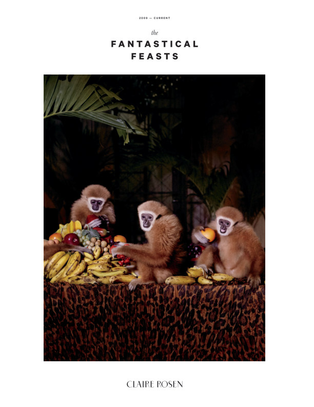View The Fantastical Feasts by Claire Rosen