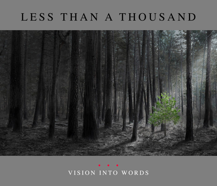 View Less Than A Thousand — Vision into Words by The Image Salon