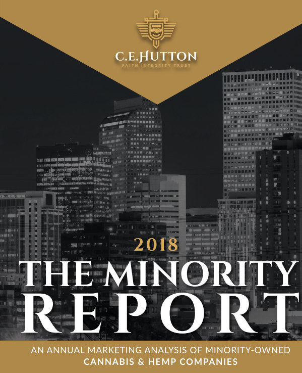 View The Minority Report by Khadijah Adams and C E Hutton