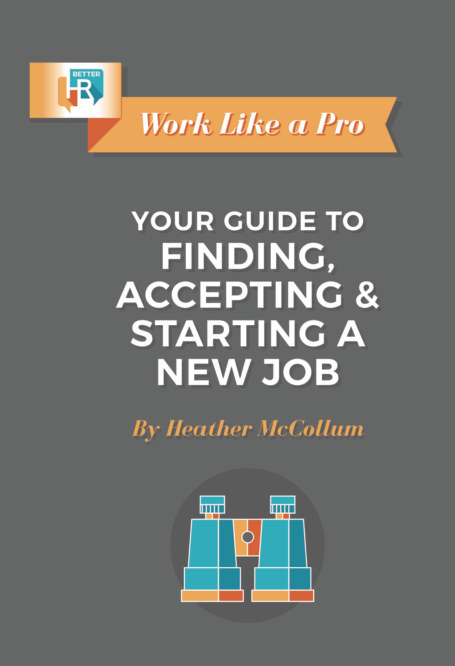 View Work Like a Pro- Your Guide to Finding, Accepting and Starting a New Job by Heather McCollum