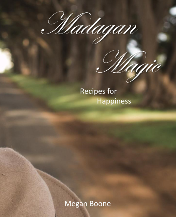 View Recipes for Happiness by Megan Boone