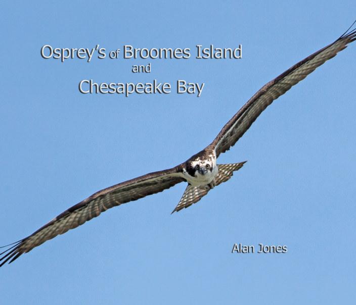 Ver Ospreys of Broomes Island por Alan Jones