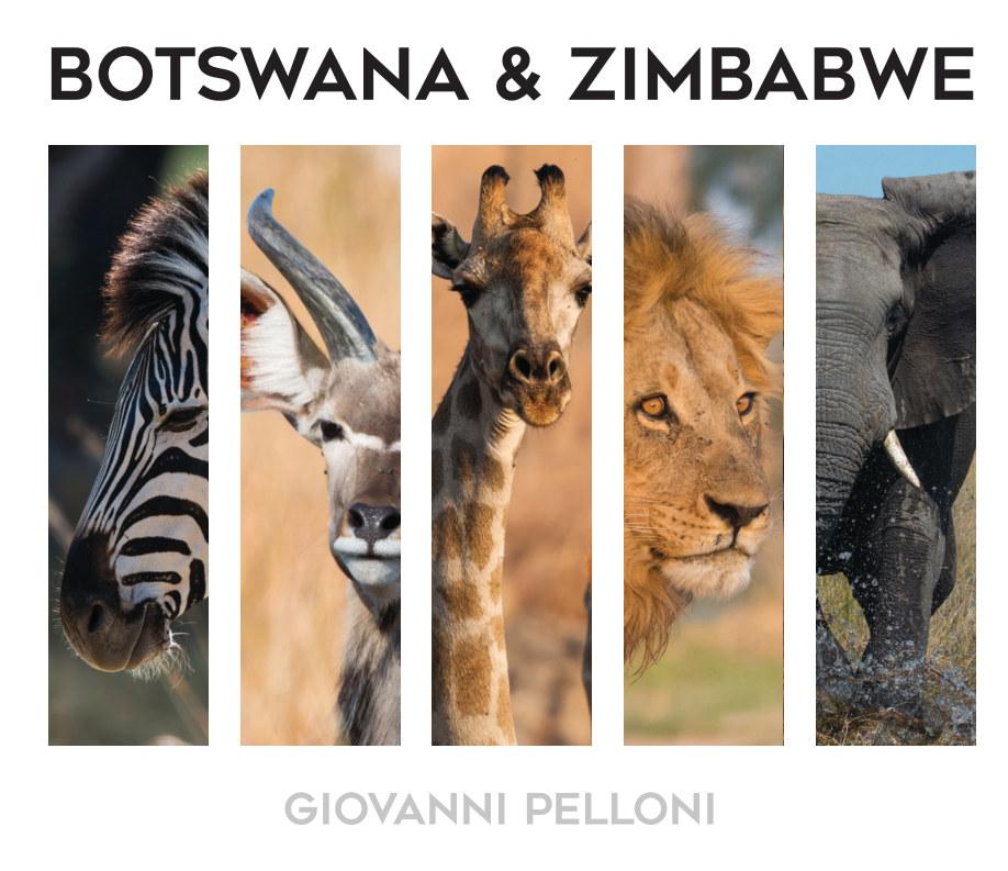 View Botswana und Zimbabwe by Giovanni Pelloni