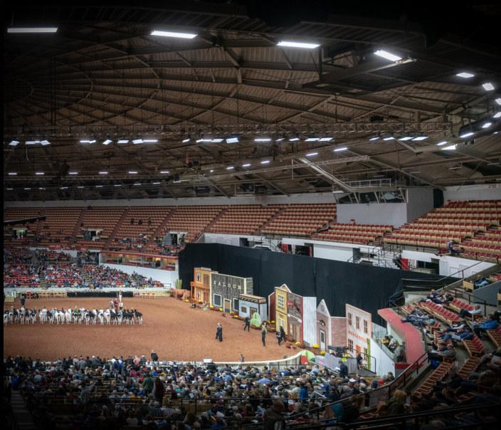 Visualizza World Dairy Expo 2018 Holstein Show di The Bullvine