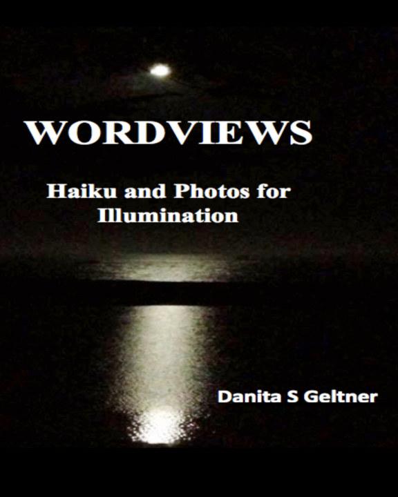 View Wordviews by Danita S Geltner