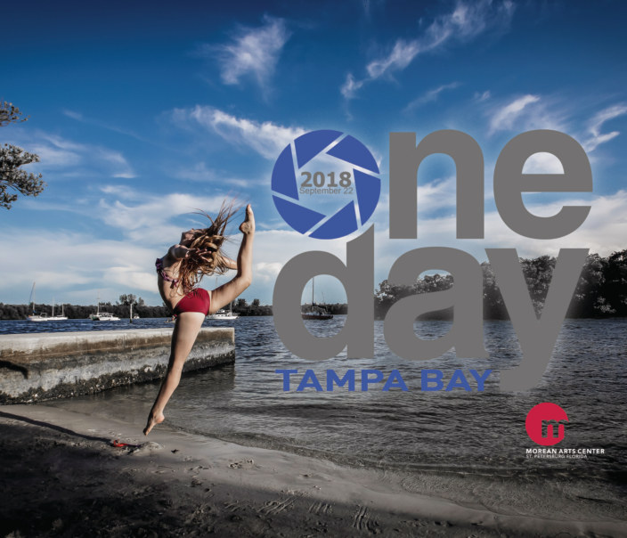 View One Day Tampa Bay 2018 by Morean Arts Center