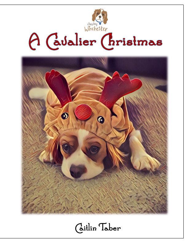 View A Cavalier Christmas by Caitlin Taber