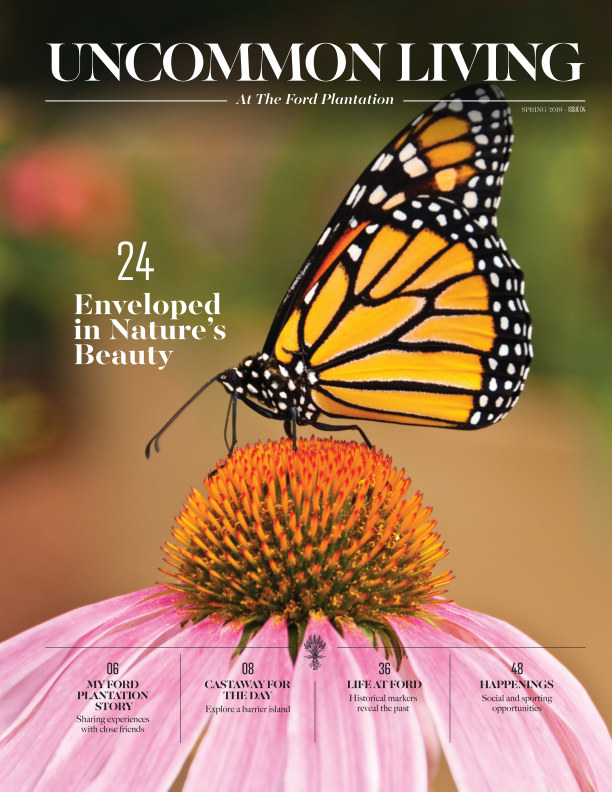 View Uncommon Living April 2019 by The Ford Plantation