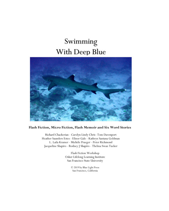 View Swimming With Deep Blue by Jennifer Lagier