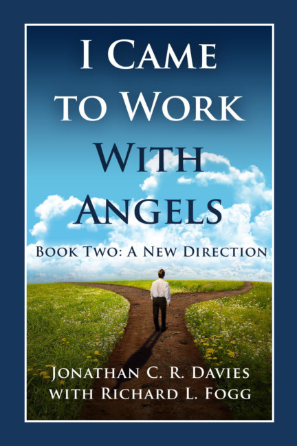 Bekijk I Came to Work With Angels. Book Two: A New Direction op Jonathan C. R. Davies