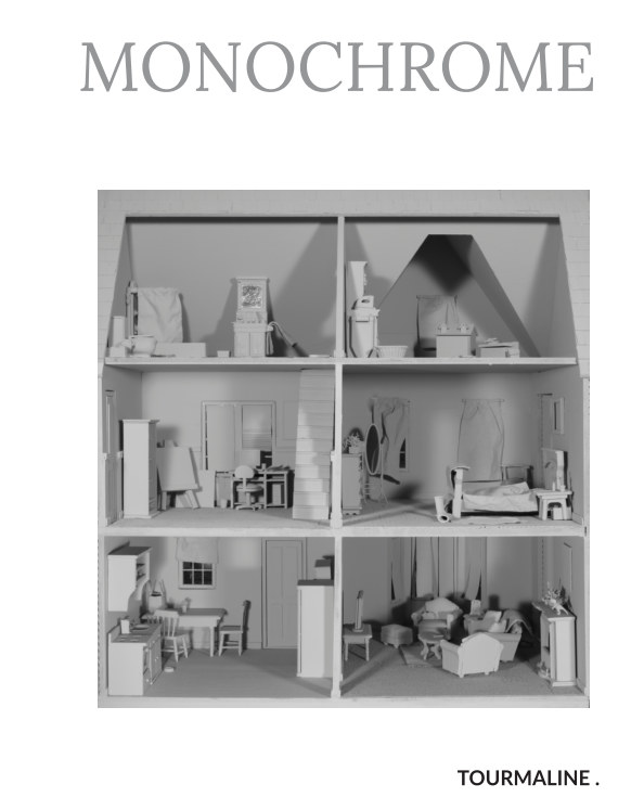 View Monochrome | Polychrome (coffee table edition) by Tourmaline .