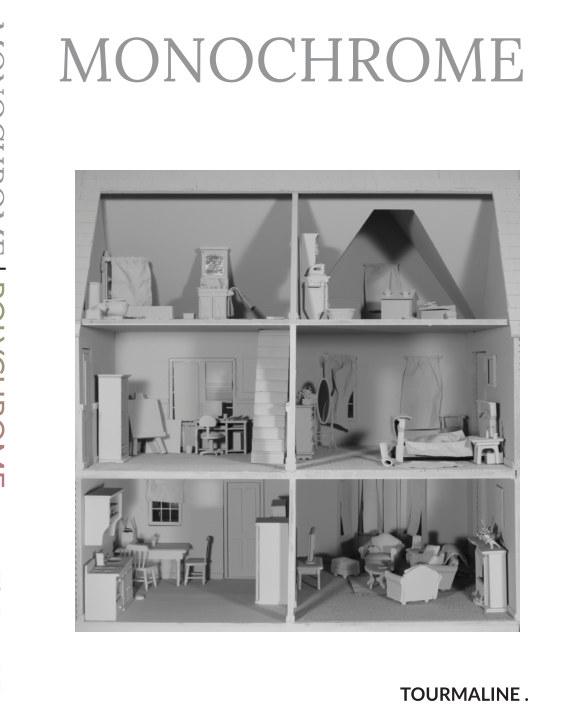 View Monochrome | Polychrome (travel edition) by Tourmaline .