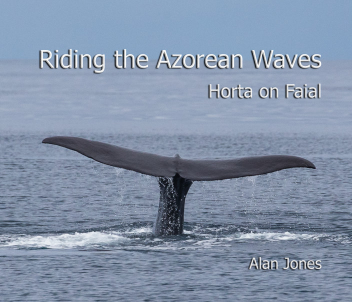 View Riding the Azorean Waves:   Horta on Faial by Alan Jones