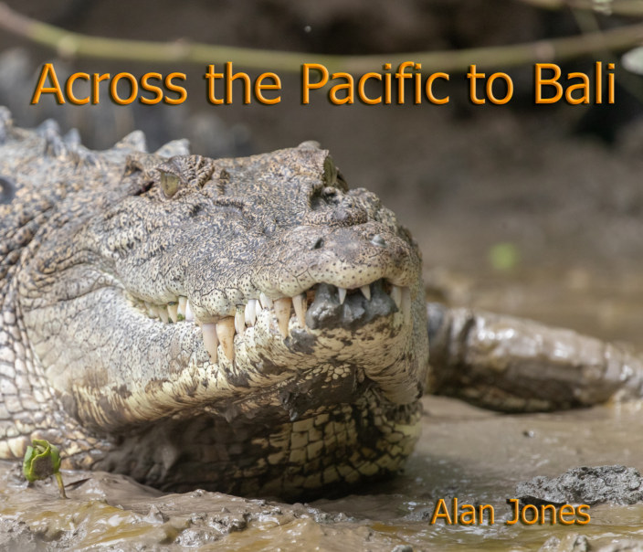 View Across the Pacific to Bali by Alan Jones