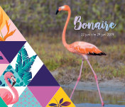 Bonaire juni 2019 book cover