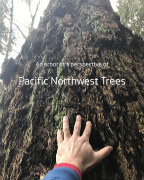 An arborist's perspective of Pacific Northwest Trees book cover
