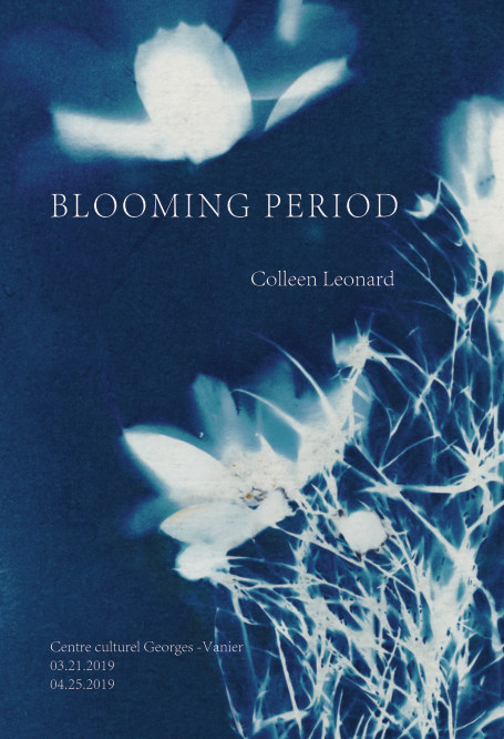 View Blooming Period by Colleen Leonard