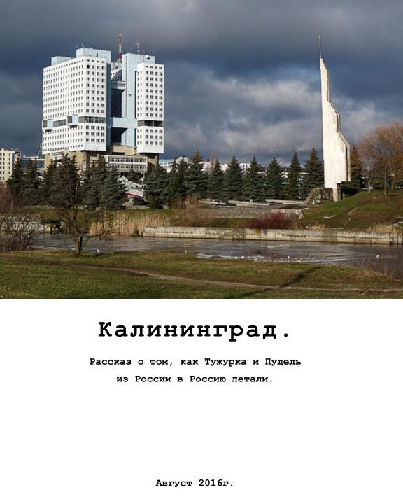 View Kaliningrad by Anna Merkureva