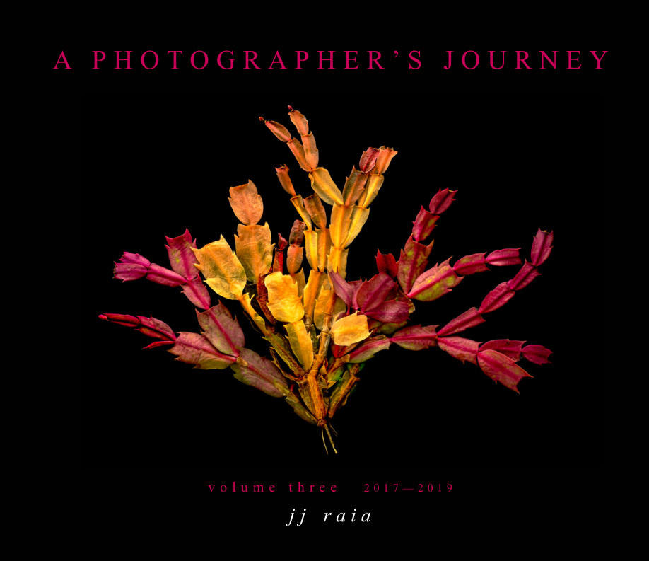 View A Photographer's Journey — Volume Three by J. J. Raia