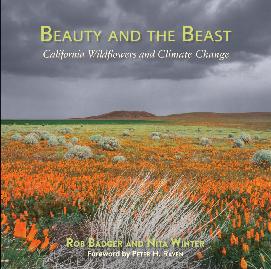 View Beauty and The Beast California Wildflowers and Climate Change by Rob Badger and Nita Winter