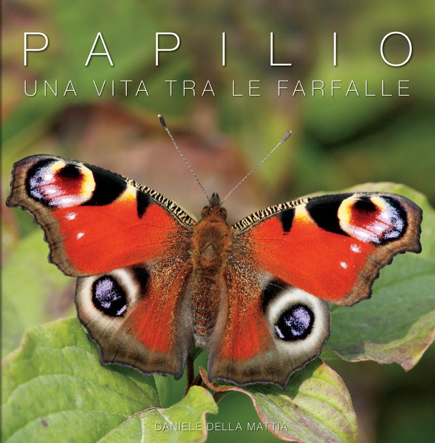 Ver Papilio por Daniele Della Mattia