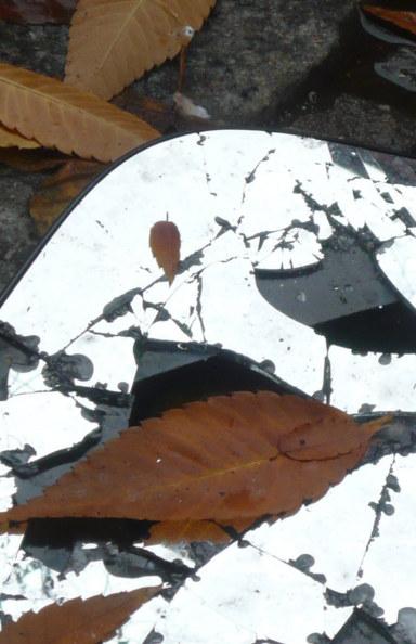 Ver Yellow Leaves por Joy Amina Garnett