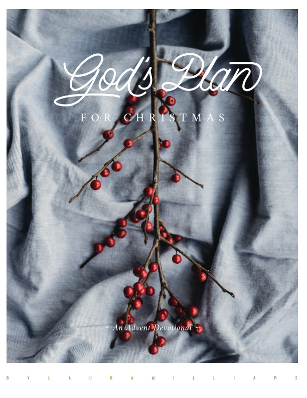 View God's Plan for Christmas by Laura Williams