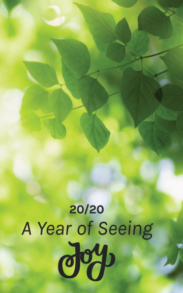 Visualizza 2020: A Year of Seeing Joy di Karla Kay Minick
