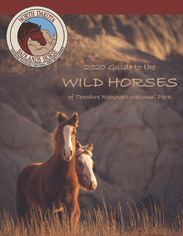 View 2020 Guide to the Wild Horses of Theodore Roosevelt National Park by North Dakota Badlands Horse
