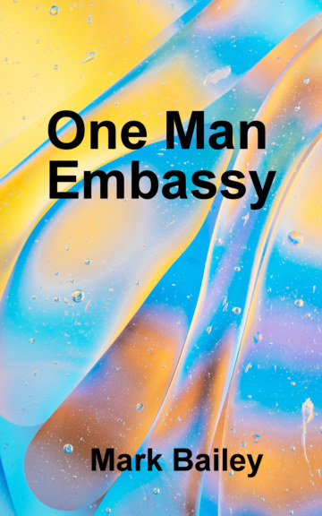 View One Man Embassy by Mark Bailey