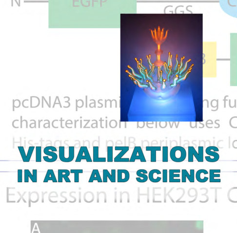 View Visualizations in Art and Science by Margaret Lazzari