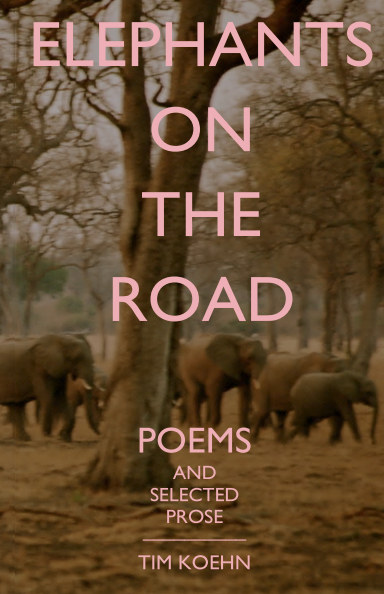 View Elephants on the Road by Tim Koehn