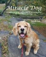 Miracle Dog book cover