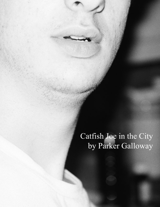 View Catfish Joe in the City by Parker Galloway