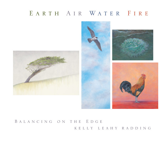 View Earth Air Water Fire: Balancing on the Edge by Kelly Leahy Radding